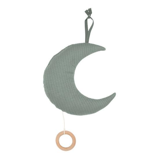 Bild von Spieluhr Mond - Pure Mint
