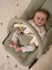 Bild von Kinderwippe grün